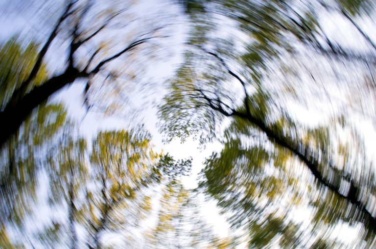 a spinning photo of tree tops